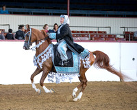 Class 128 HA Mounted Costume - Open
