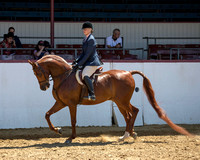 Class 110 AHA Hunter Seat Eq Medal - JTR 13 & Under