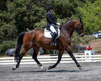 2016 Fairwind Farm Dressage Show