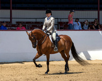 Class 76 HA Hunter Pl - JTR Choice/Elite