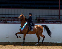 Class 265B A/HA Walk-Trot Country English Pl 10 & Under