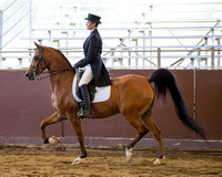 Class 110 Arabian English Show Hack - ATR
