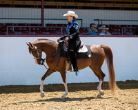 Class 106 HA Western Pl - Jr Horse & 5 Under