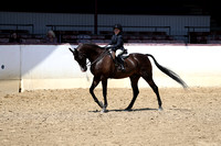 Class 253 - Walk-Trot Hunter Seat Equitation/Riders 10 & Under