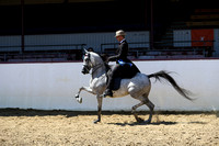 Class 39 - HA Country English Pl/Jr Horse