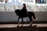 Class 3 HA/AA Ladies Side Saddle Horses Open