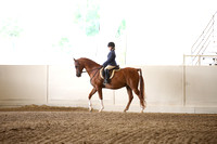 Class 64 A/HA/AA Walk Trot Hunter Pleasure Riders 10 & Under