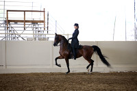 Class 70 Saddle Seat Equitation  JTR 18  yrs/Under