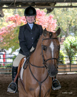 Golden Gate Arabian Horse Show - 2014