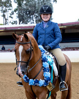 Class 279 - Walk-Trot Hunter Pleasure