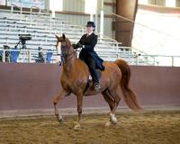 Class 17 Saddle Seat Equitation - JTR 18 Yrs & Under