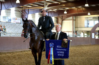 Class 269 - HA English Pl/Jr Horse 5 & Under