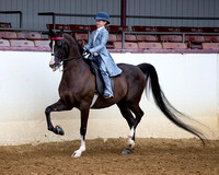 Class 224 - Walk-Trot Saddle Seat Equitation/10 & Under