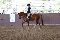Class 149 - AHA Hunter Seat Equitation Not to Jump Medal/JTR 18 Yrs/Under
