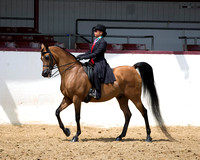 Class 287 - Walk-Trot Country English Pl/10 & Under