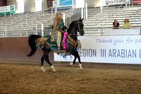 Class 331 - HA Mounted Native Costume Championship