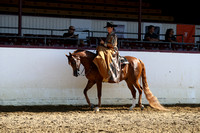 Class 52 - HA Ladies Side Saddle/Open
