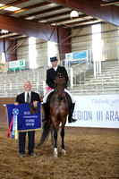 Class 211 - HA English Show Hack Championship