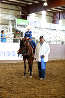 Class 129 - Walk/Jog/Western Pl/Riders 10 & Under