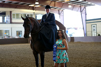 Class 44 - HA Ladies Side Saddle/Open